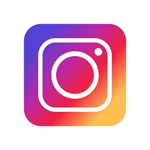 Scoial-Media-Updates_Icon-Instagram